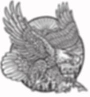 FINAL EAGLE.jpg