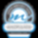 CMT-Professional_Level_Large.png