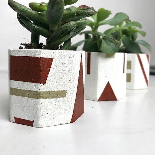 3 white mini succulent plant pots (brown/gold)