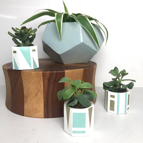 3 white mini succulent plant pots (blue/gold)