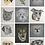Custom pet portraits - gallery