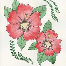 Hibiscus Babies