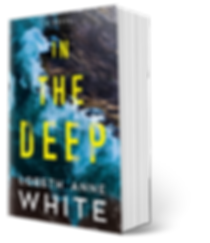 IN THE DEEP 3-d BOOK cover.png