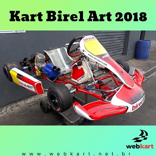 Kart Birel Art 2018