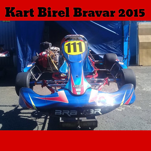 Kart Birel Bravar 2015/16, com motor Honda 21 HP