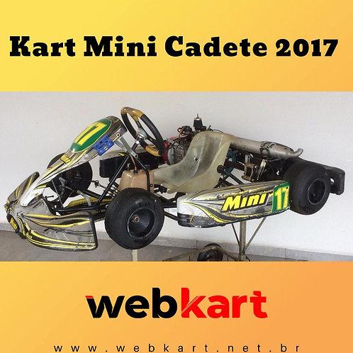 Kart Mini Cadete 2017, Com Motor Honda 6.5HP