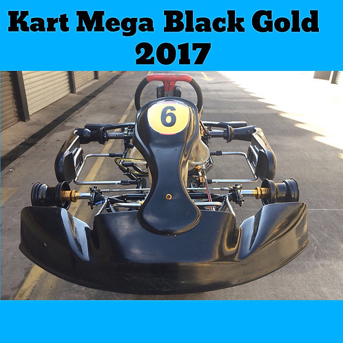Kart Mega Black Gold X 2017