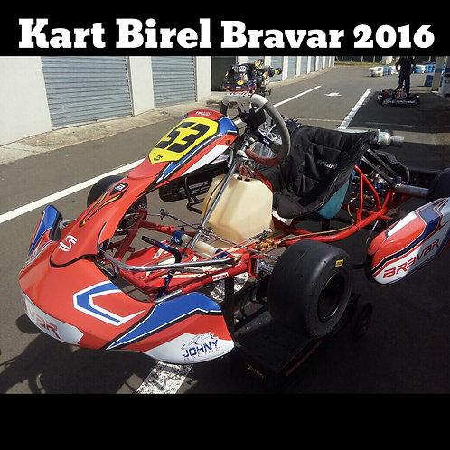 Kart Birel Bravar 2016, com motor Honda 25HP