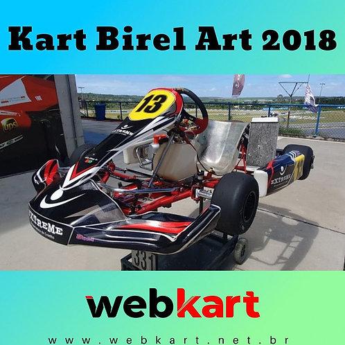 Kart Birel Art 2018, com Motor Rok