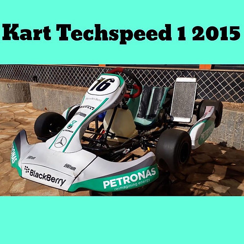 Kart Techspeed 1 2015, com motor Parilla My10