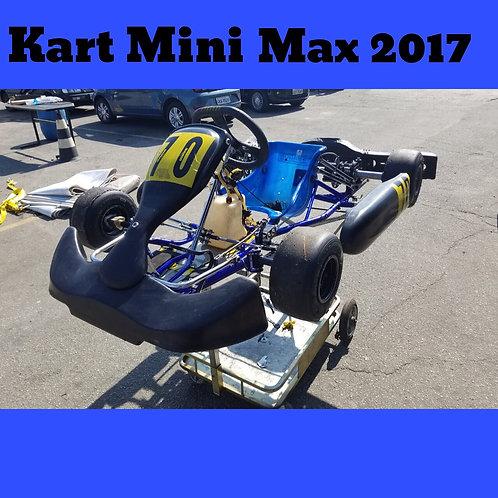 Kart Mini Max 2017 , com motor Rotax Mini Max Evo