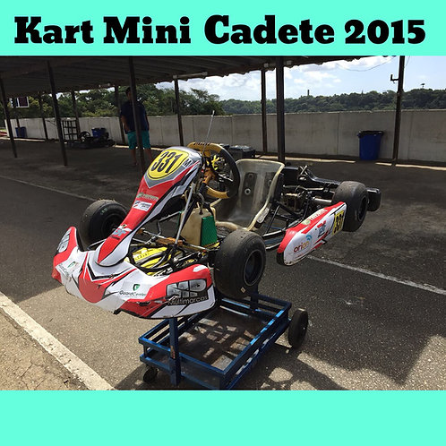 Kart Mini Cadete 2015, com motor Honda 5.5 HP
