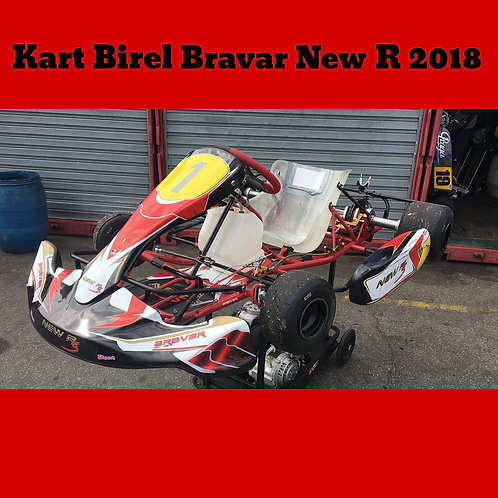 Kart Birel Bravar New R 2018