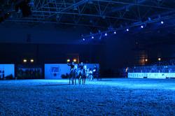 Fiera Cavalli a Roma - 2014