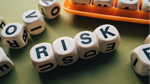 Successful SMEs require a finance and risk capability