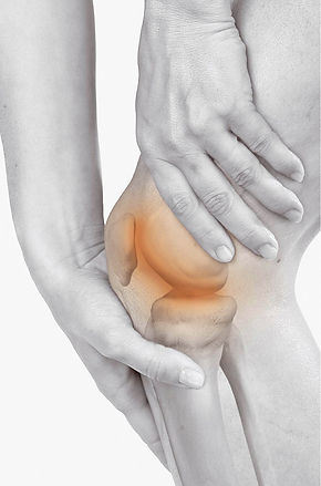Pathologie du genou