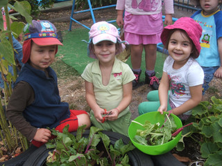 Kinder Photos of 2009 006.jpg