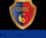 china-council-logo.png