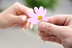 giving hands flower.jpeg