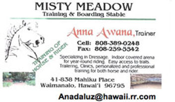 BusinessCard_AnnaAwana.jpg