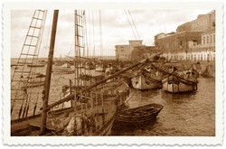 יפו רציף העולים נמל 1936