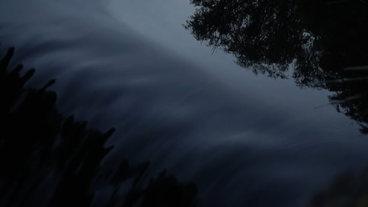 Black Seas (Trailer)