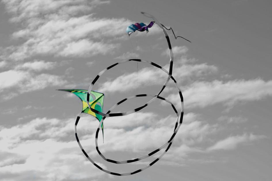 """Fly Against the Wind"" San Diego, California. 2019"