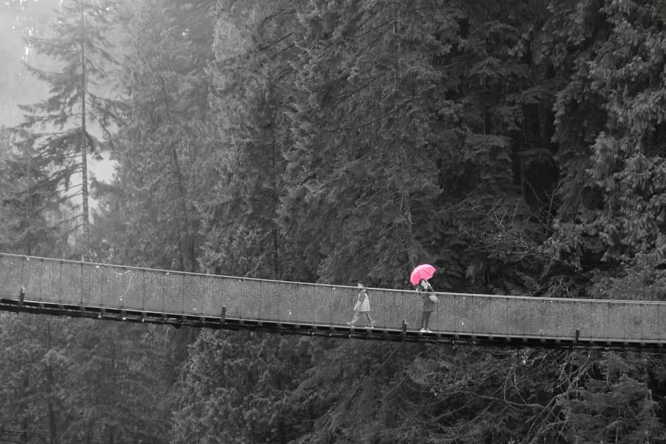 """Pink Umbrella"" Vacouver, Canada. 2018"