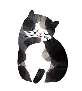 contact kitty.jpg