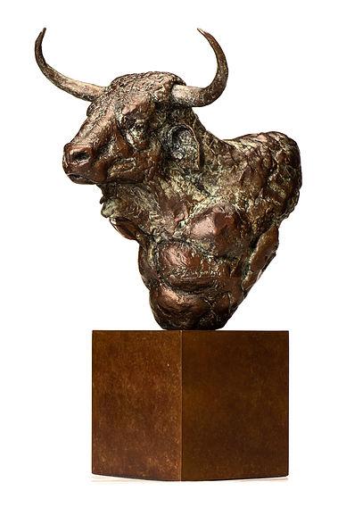 bull head-5.jpg