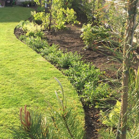 Halling Garden Design