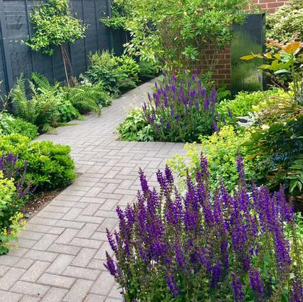 Dartford Garden Design