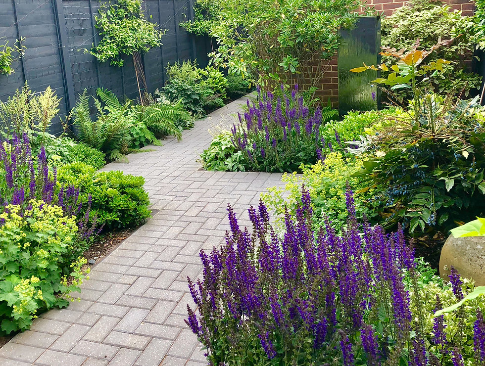 AW Garden.jpg