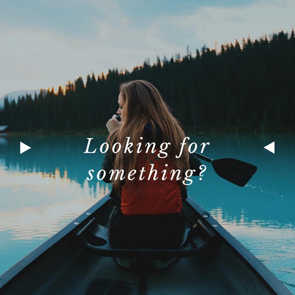 Why Seek Jesus?