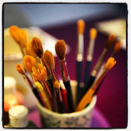 Gently Used Economy Brushes