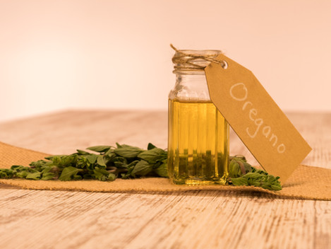My Q & A with Dr. Stock on the Benefits of Oregano Essential Oils for Chickens