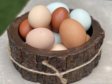 Got Soft Eggshells? Here's How to Help