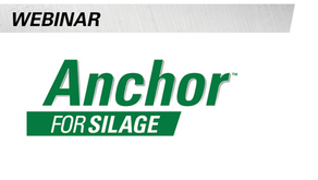 Get High Quality Silage with Anchor™ for Silage