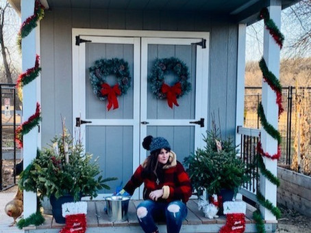Decorating Your Coop for Christmas