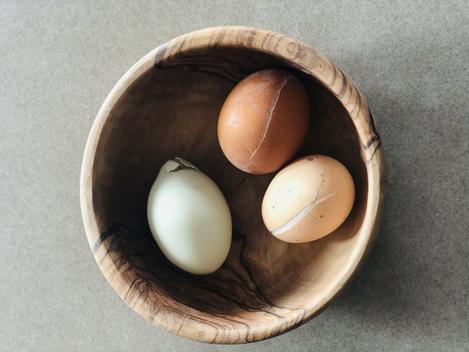 Handling Frozen Eggs in Your Nest Boxes