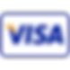 visa-payment-icon-256.png