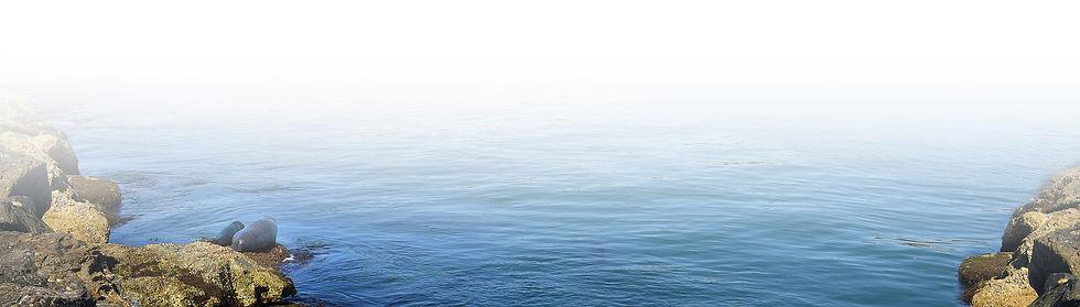beach-shore.jpg