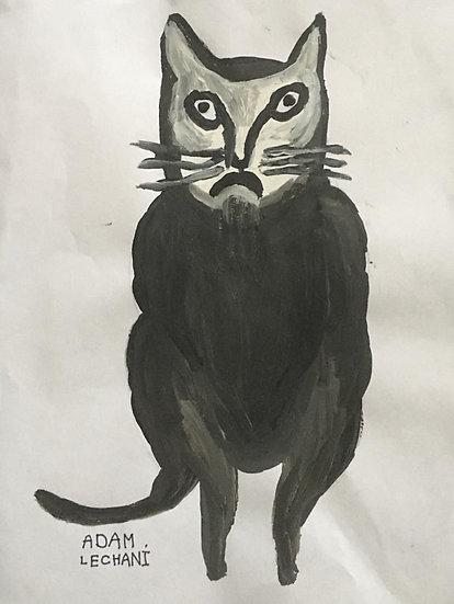 """The Cat"" by Adam Lechani"
