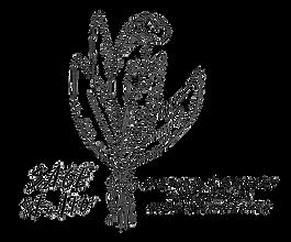 SAGE_Studio_logo-removebg.png