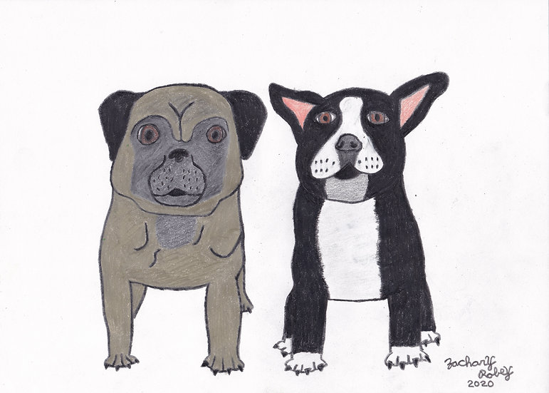 Custom Pet Portrait by Zachary Robey