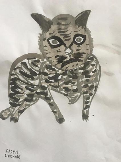 Tiger Cat by Adam Lechani