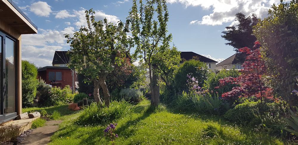 Wild Edge Garden Design - Garden Design Cheltenham