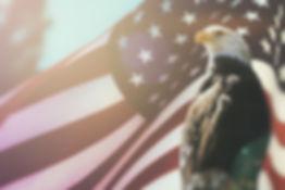 Eagle 3459 x 2313.jpg
