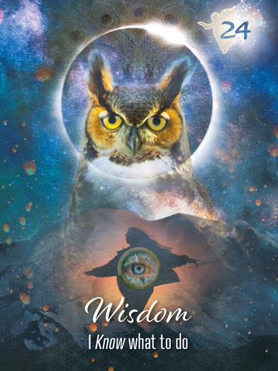 wisdom soul seekers24.jpg