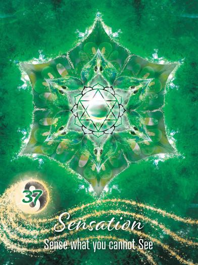 sensation soul seekers37.jpg